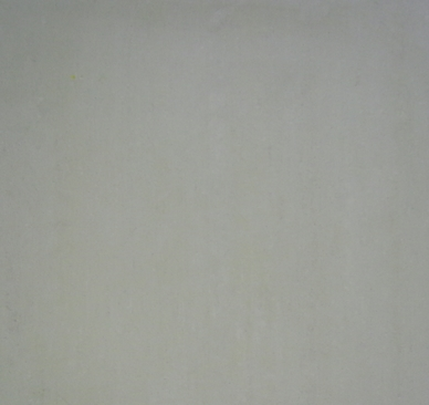LAND FUSION BIANCO MATT 45X45