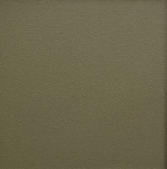 OLIVE GROVE TERRASHIELD 300X300