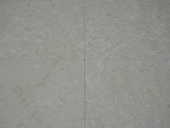 CANNES POLISHED 395X395 ARIOSTEA